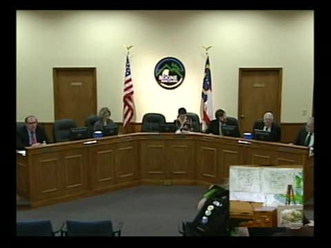 Town Council Meeting - 03-17-2011