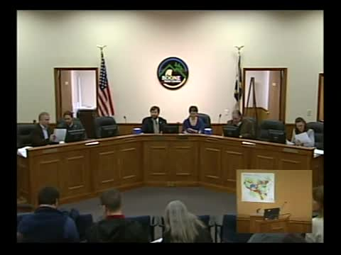 Town Council Meeting 3-19-2015